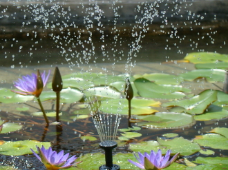 solar fountain pump, solar pump, fish pond, garden