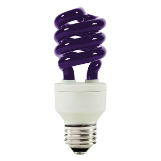 Black CFL Light 12VDC, 20W - Attract Insect
