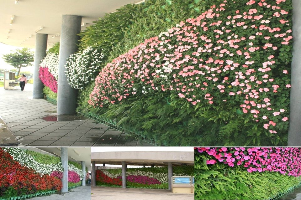 Vertical farming plant factory green wall living wall